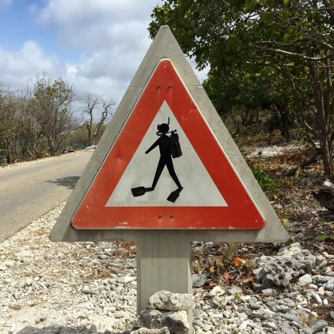 Bonaire diver island