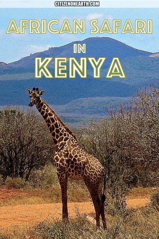 African Safari in Kenya Citizen on Earth Travel Blog
