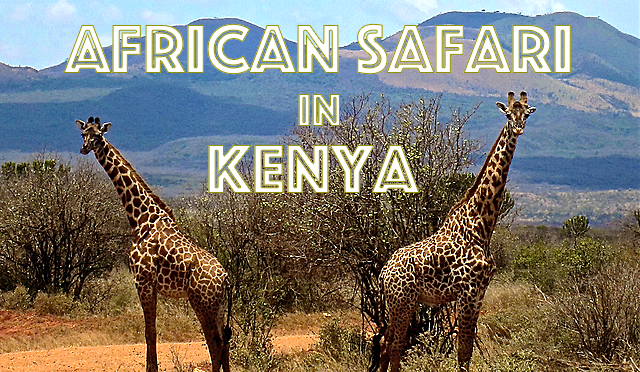 African Safari in Kenya