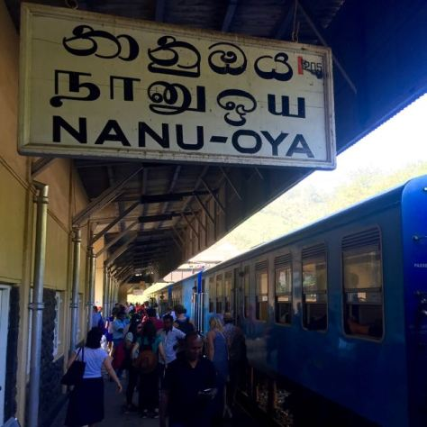 train ride in sri lanka nanu oya train station to go to nuwara eliya