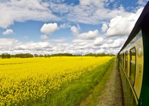 Things to do in Rügen Island in Baltic Sea in North East Germany - Rasender Roland Train through beatiful landscapes