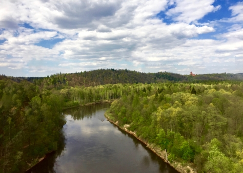 Day trip from Riga to Sigulda - Gauja River Valley Views from Cable Car