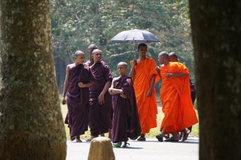 2 days in Kandy Central Province of Sri Lanka - Buddhist Students in Royal Botanical Garden
