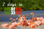 Things to do in 2 days in Merida - Yucatan Peninsula - Mexico