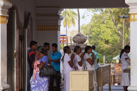 Visiting Ancient City of Anuradhapura in Sri Lanka - Sri Maha Bodhi Tree Praying