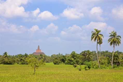 Visiting Ancient City of Anuradhapura in Sri Lanka - View from Tissa Weva