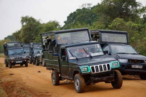 How do the safari jeeps look like in Yala National Park in Sri Lanka